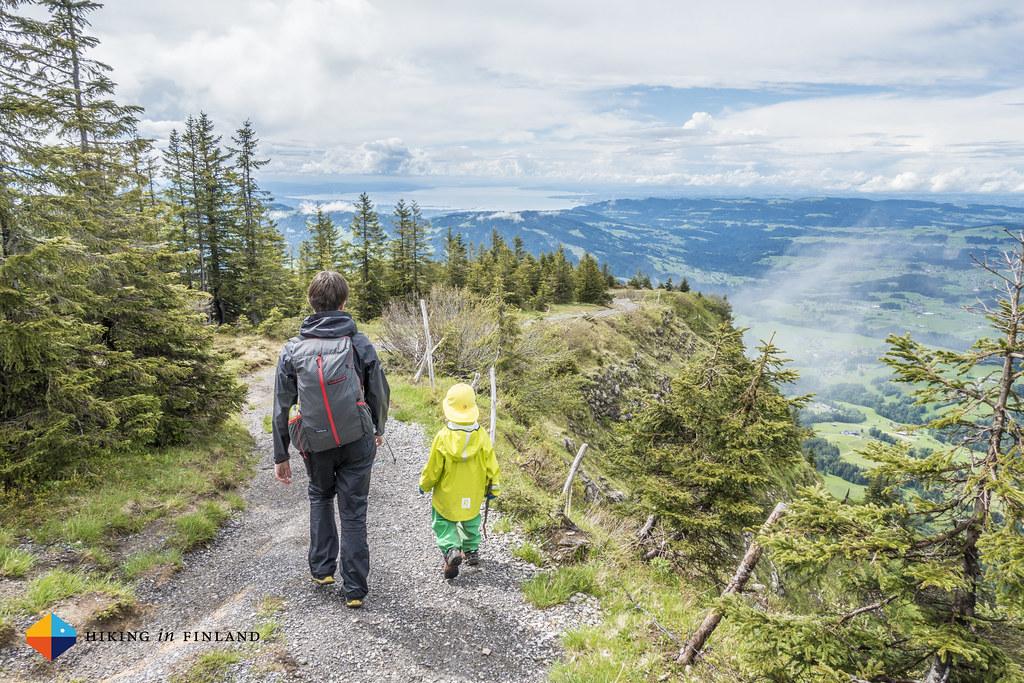 Bodensee views