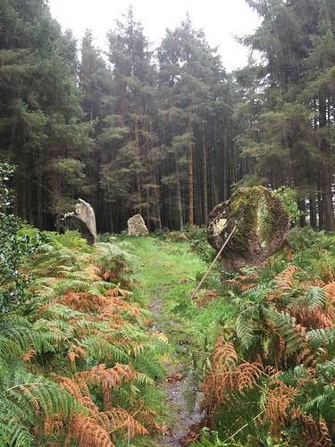 Kingarth Stone Circle