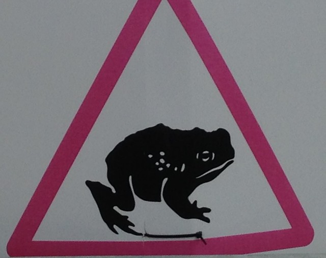 Frog run warning sign