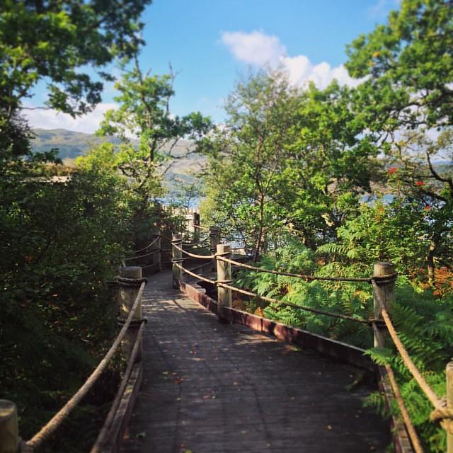 Garbh Eilean Wildlife Hide, Loch Sunart, Scottish Highlands #scotland #lochsunart #scottishhighlands #scottishscenery #garbheilean #sealoch #scottishwildlife