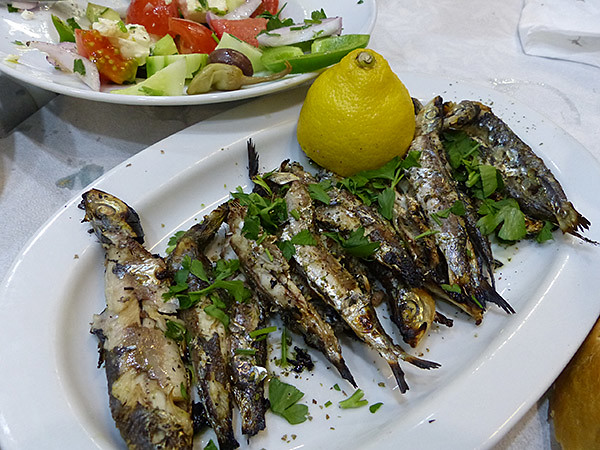 sardines J1#