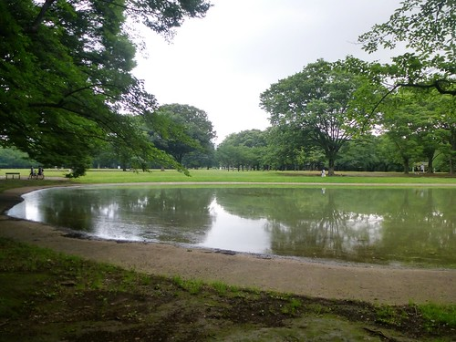 jp16-Tokyo-Parc Yoyogi (5)