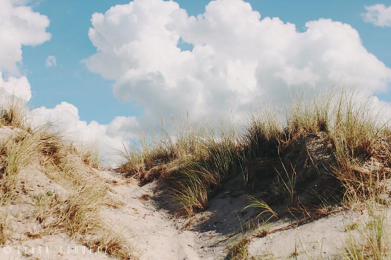 seaside_ems_1