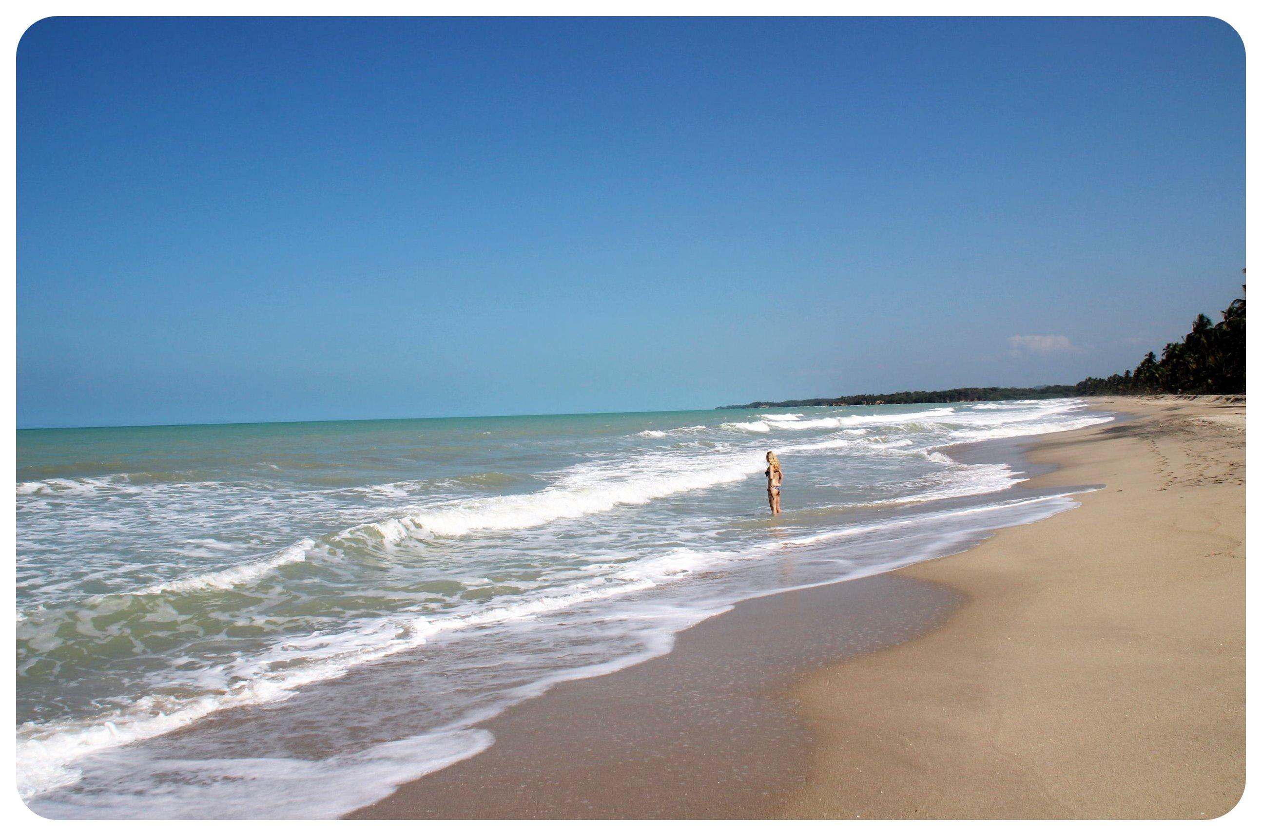 palomino beach dani