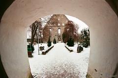 Монастырь Святой Бригитты. Pirita klooster. Tallinn. Estonia