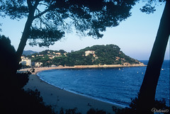 Platja de Fenals. Lloret de Mar. Spain