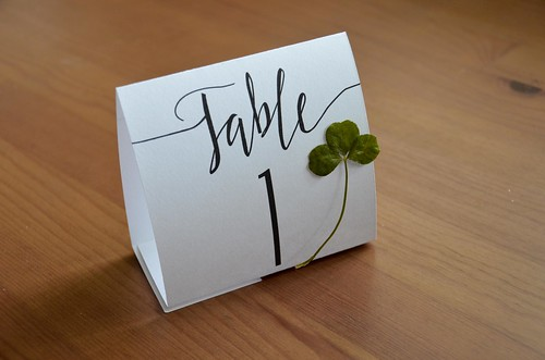 Botanical Calligraphy Table Numbers