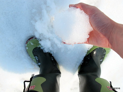 Gumboots and Snow
