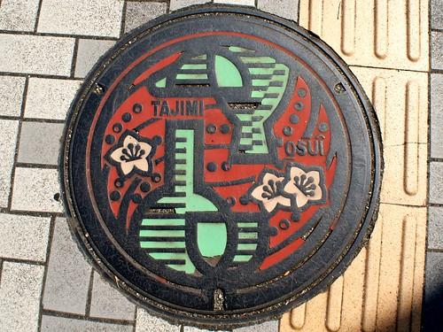 Tajimi Gifu, manhole cover (岐阜県多治見市のマンホール)