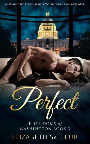 Perfect-cover_SaFleur_-640x1024