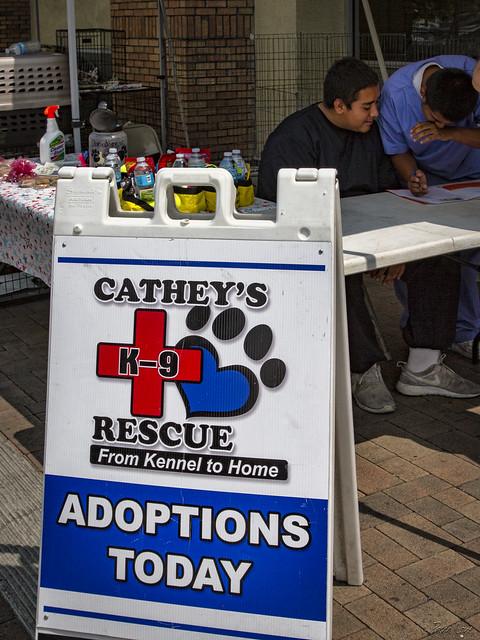 Petsmart adoptions