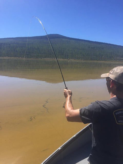 fly-fishing-davis-lake