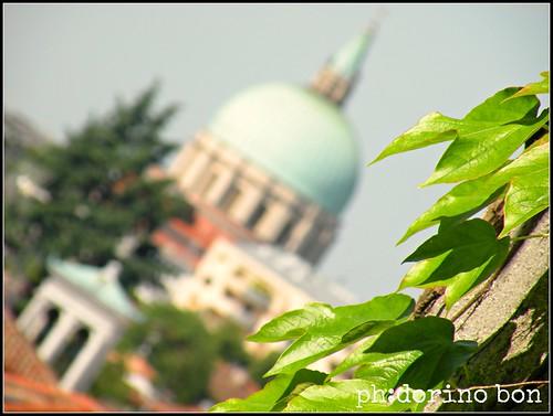 Udineinvetrina13