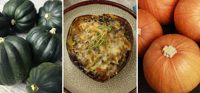 6 Recipes To Squash Your Hunger - Around the Clock