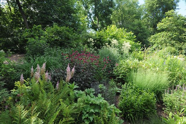 Kelley-Carmichiel garden