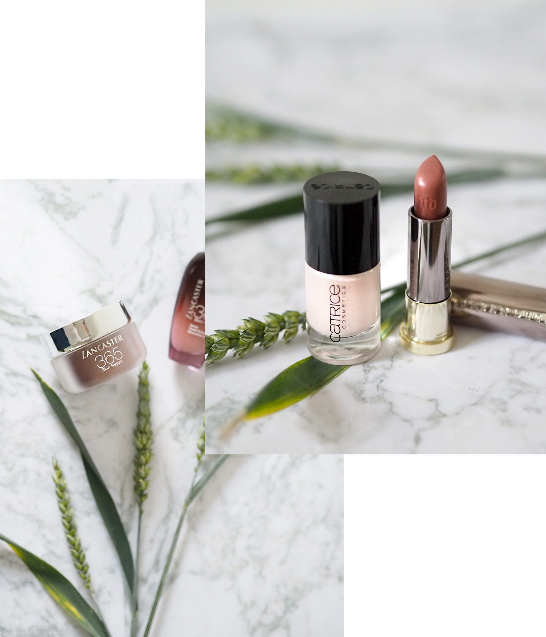 beauty favourites catrice nail polish urban decay vice lipstick lancaster 365 skicare ysl mon paris perfume makeup amu beautyblogger makeupblogger review products summer skin scent perfume newin shopping cats & dogs beautyblog ricarda schernus 1