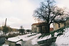 Морской музей Эстонии. Paks Margareeta. Tallinn. Estonia