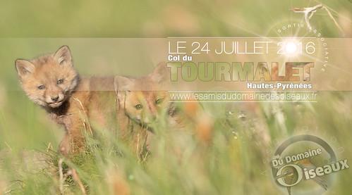Sortie ASSOCIATIVE - Col du Tourmalet 2016