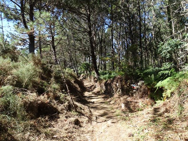 Sendero de la Ruta do Castro de Baroña