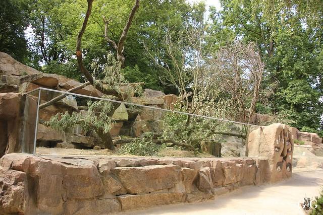 Besuch Tierpark Friedrichsfelde 20.07.201644