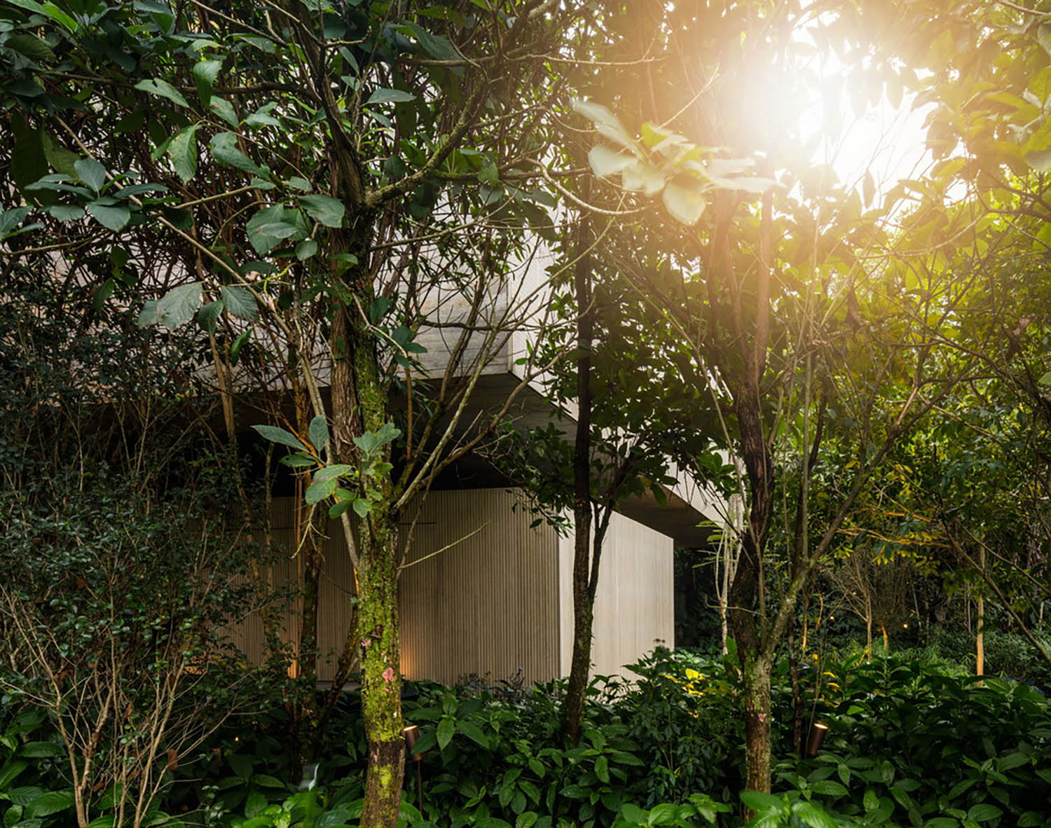 mm_Jungle House  design by Studiomk27 - Marcio Kogan + Samanta Cafardo_12