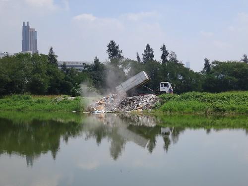 2_2012Jun_dumping