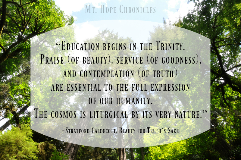 Education Begins in the Trinity @ Mt. Hope Chronicles