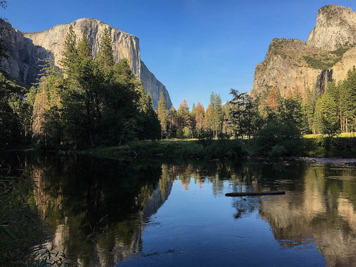Late Afternoon in Yosemite