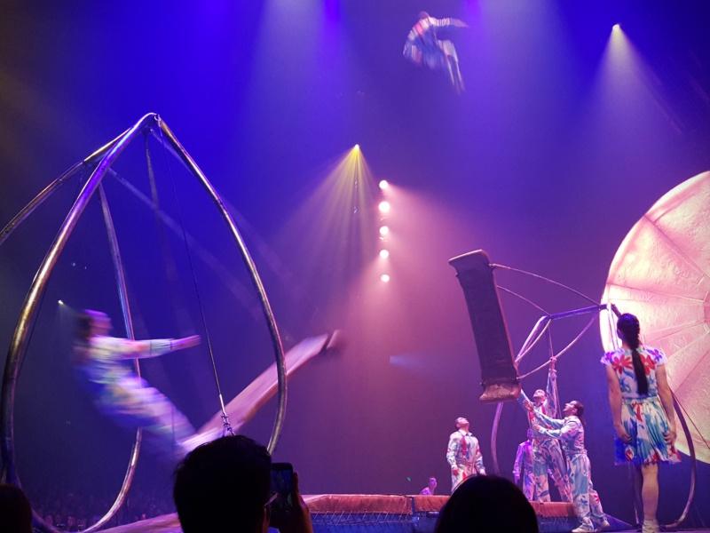 Cirque du Soleil Swings