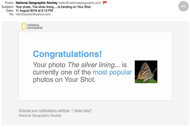 Your photo The silver lining is trending on Your Shot