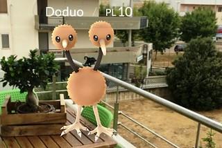 Noicattaro. Pokemon Mania front