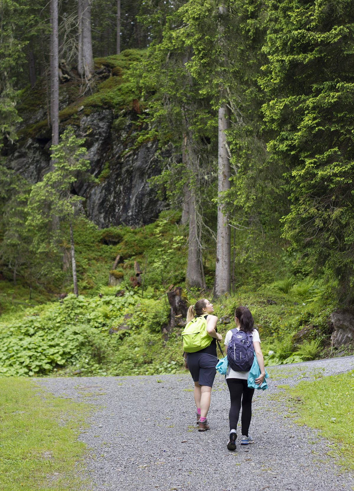 forest-hike-st-anton-austria