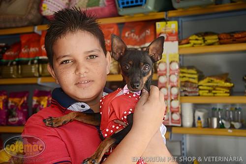 Emporium Pet Shop & Veterinária