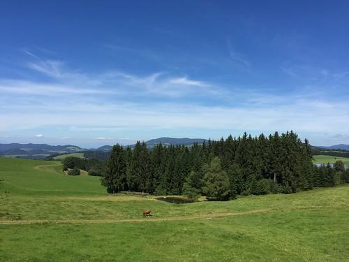 Thurner, Black Forest, Baden, Germany