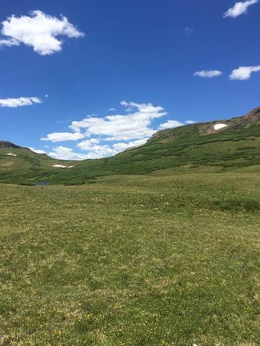 踏み跡のないセクションもかなりあります。この写真の中にマーキングが二つは写っているはずですが、ご覧のとおり風景に埋もれてしまっています。