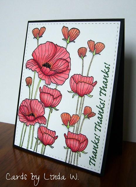 Poppy thanks