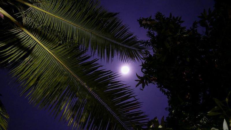 28135933931 d55337897a c - REVIEW - Villa Amrita, Ubud (Bali)