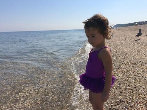 Cedar Beach- August 2016