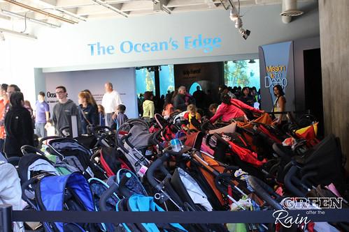 160703f Monterey Bay Aquarium _082