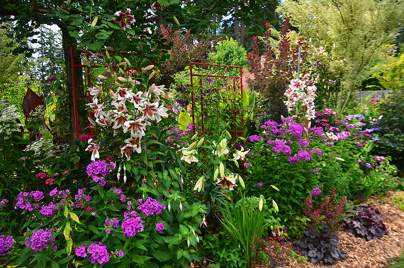 Portland garden