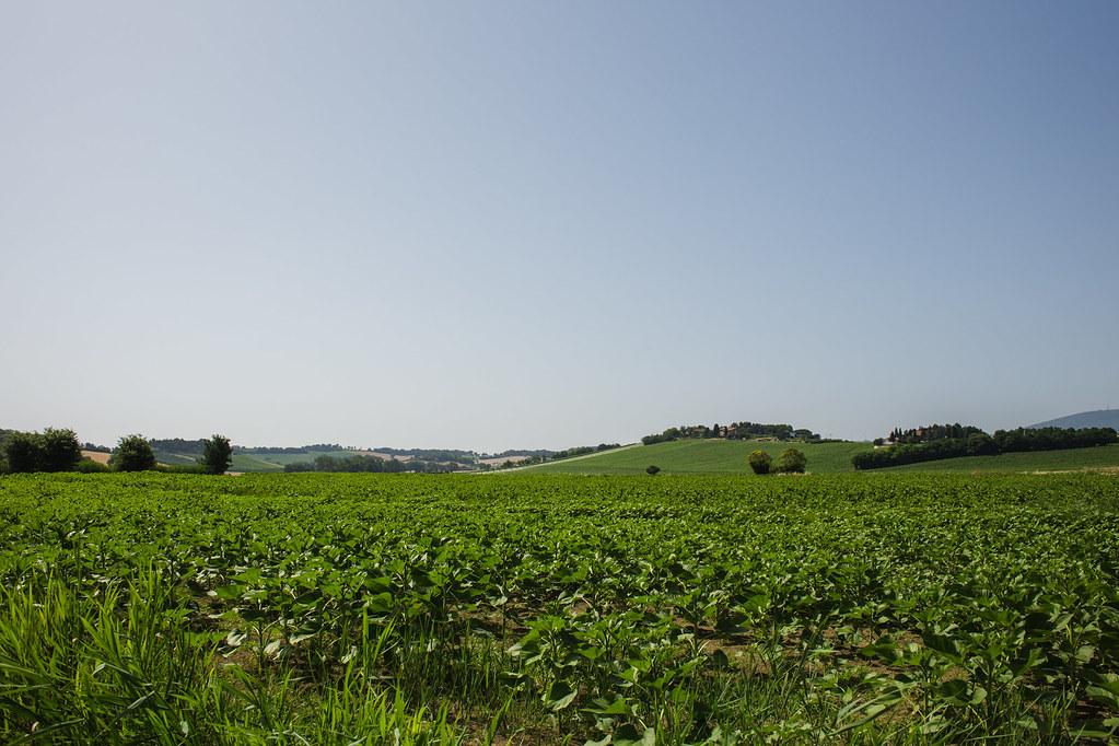 Italy – Numana