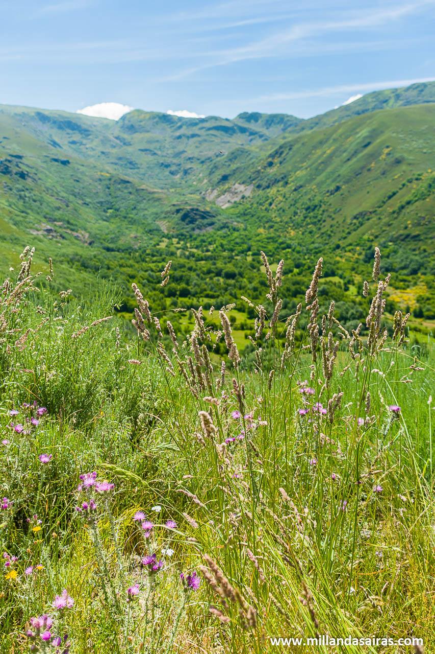 El valle del río Maluro