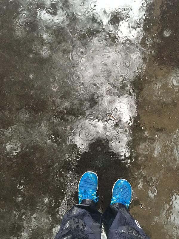 rain, helsingborg