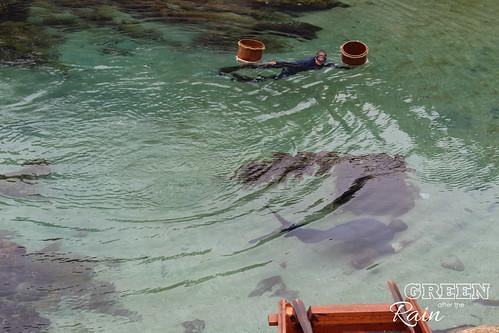 160703f Monterey Bay Aquarium _052