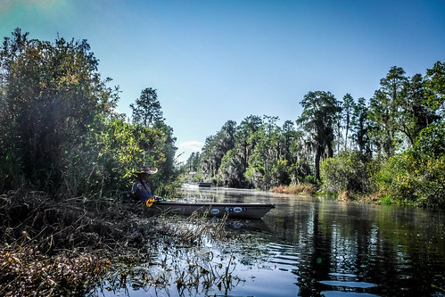 Lowcountry Unfiltered at Okefenokee-180