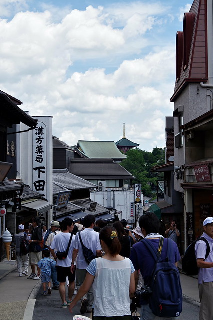 Narita Gionsai 2016 09