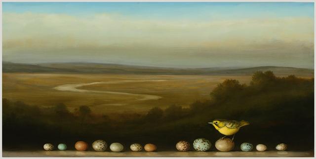 David Kroll krolllandscapeyellowwarbler