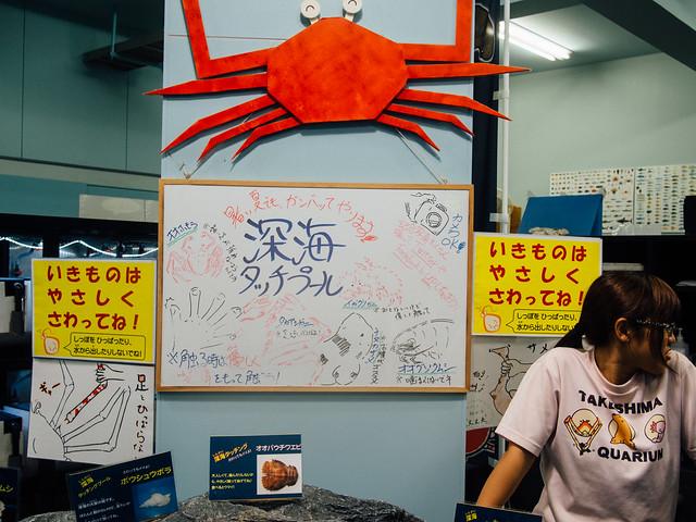 160810_takeshima_aquarium-19