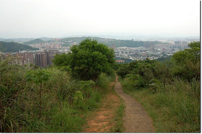 新路坑山(龜崙山)俯瞰桃園市區