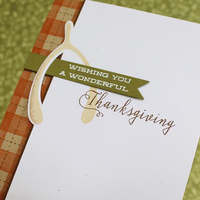 Wonderful Thanksgiving Close Up